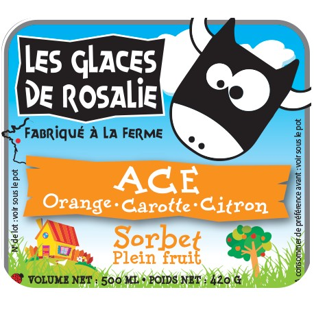 Sobert Plein Fruit ACE orange carotte citron - les glaces de rosalie - 500ml