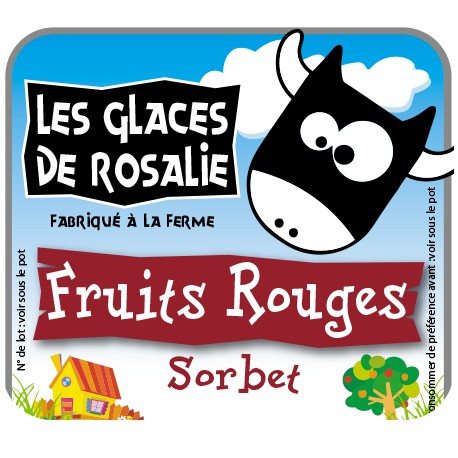 Sorbet fruits rouges pleins fruits - les glaces de rosalie